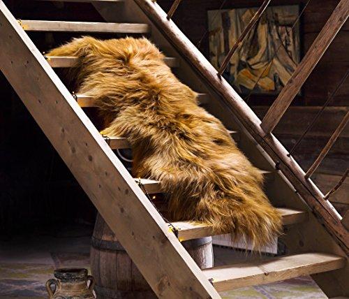 Estro | ISLÄNDISCHER Doppel-Schaffell Lammfell Teppich | Glänzend und luxuriös | Farbvielfal (Rostbraun, 170 cm)