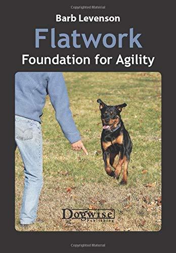 Flatwork: Foundation for Agility