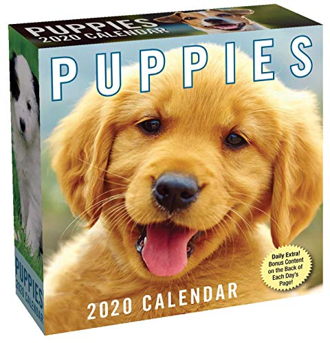 Puppies 2020 Day-to-Day Calendar