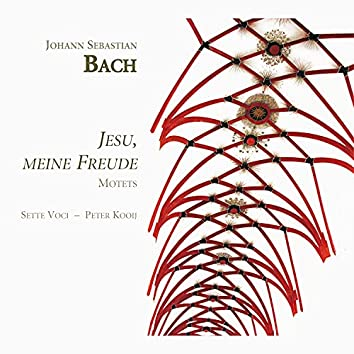 Bach: Jesu, meine Freude (Motets)