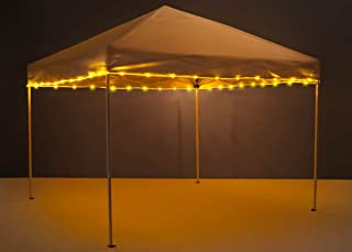 Best solar lights for canopy Reviews