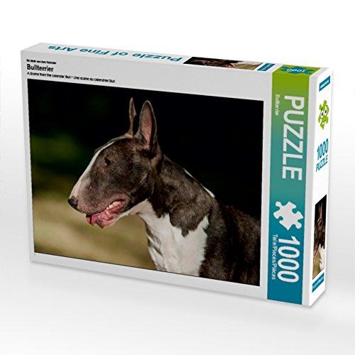 CALVENDO Puzzle Bullterrier 1000 Teile Lege-Größe 64 x 48 cm Foto-Puzzle Bild von Bullterrier