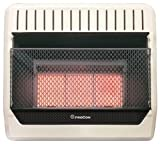 PROCOM HEATING ML250HPG 28,000 BTU Liquid Propane Gas Infrared Wall Heater