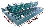 BBT@ / Doppelstab-Mattenzaun Komplett-Set / Grün / 123cm hoch / 50m lang / Zaunanlage Gartenzaun Metallzaun Zaun