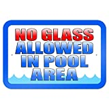 No Glass Allowed in Pool Area 9' x 6' Metal Sign