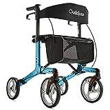 Best Rollators - OasisSpace Foldable Rollator Walker with Seat, Walker Review