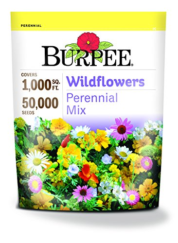Burpee Wildflowers Perennial Mix | 50