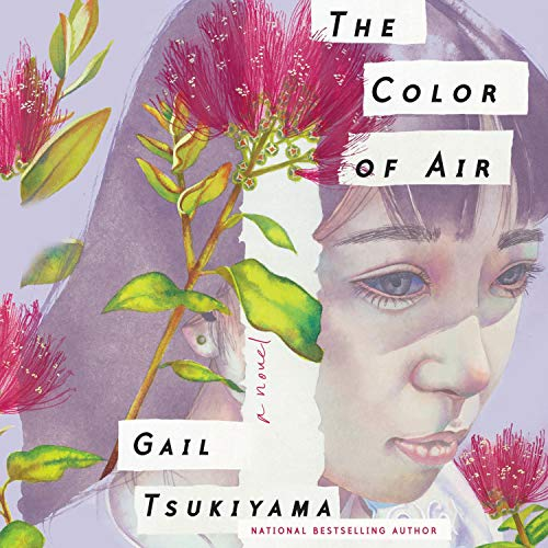 The Color of Air audiobook cover art