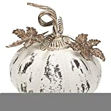 Small Pumpkin Rustic White 10 x 10 Iron Metal Harvest Collectible Figurine