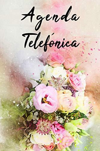 Agenda Telefónica Abecedario: Libreta de direcciones alfabética para registrar la información de sus contactos, como nombres, direcciones, teléfonos, ... electrónicos ...   más de 700 contactos