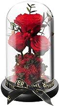 SOIMISS Eeuwige Roos Decor Glazen Koepel Bloem Foto Rekwisieten Forever Rose Geschenkdoos Bewaard Gebleven Romantisch Boek...