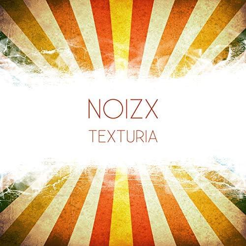 NoizX