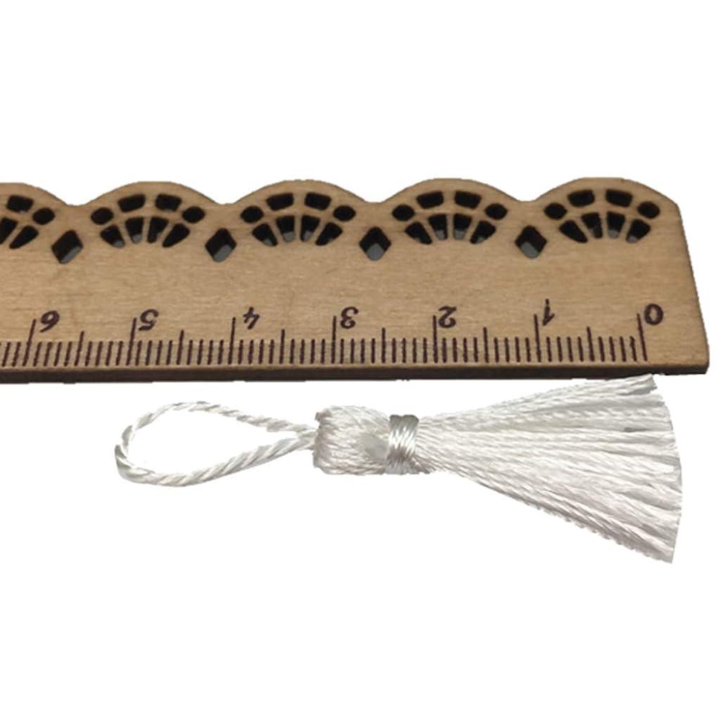 OZXCHIXU(TM) 20PCS Mini Mini Fiber Tassel 2 Inch DIY Craft Accessory (White)