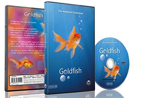 Baby- und Kinder DVD - Goldfisch Aquarium in HD mit langen Szenen