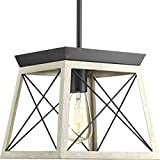 Progress Lighting P500041-143 Briarwood One-Light Mini-Pendant, Graphite