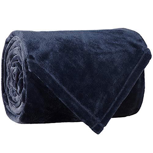 LBRO2M Fleece Bed Blanket Queen Size Super Soft Warm Fuzzy Velvet Plush Throw Lightweight Cozy Couch Blankets (90x90 Inch) Royal Blue