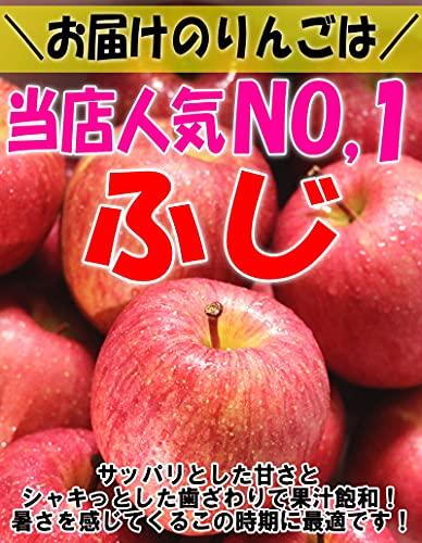 青森県 サンふじ