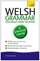 Welsh Grammar You Really Need to Know (Teach Yourself)