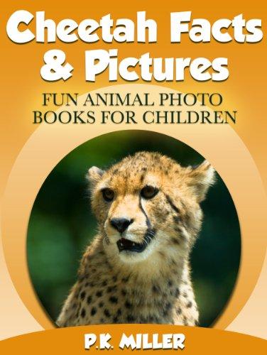 Amazing Photos /& Fun Facts Book About Cheetah For Kids Cheetah