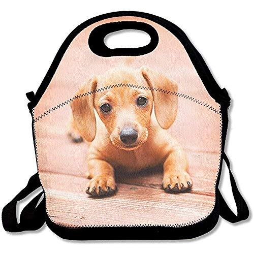 So Cute Doxie! Bedruckte große und dicke Neopren-Lunch-Taschen, isolierte Lunch-Tasche, Kühltasche, warm, mit Schultergurt, für Damen, Teenager, Mädchen, Kinder, Erwachsene