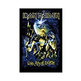 Schwermetall-Band Iron Maiden Leinwand Poster Schlafzimmer