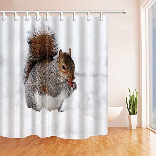 JOOCAR Design Duschvorhang, Eichhörnchen essen im Schnee, Winter, süßes Tier, weiß, grau, wasserdichter Stoff, Badezimmerdekor-Set mit Haken