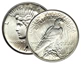 Now in Stock! Our Choice of Date from the mid 1920's. Extra Fine Condition. Image is Stock Photo of Peace Dollar.