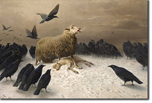 Introspective Chameleon August Friedrich Albrecht Schenck - Anguish (1878) - Reproduction of a Beautiful Raven/Sheep Painting - Photo Poster Print Art Gift - Size: 24 x 16 Inches (61 x 40.5 cm)