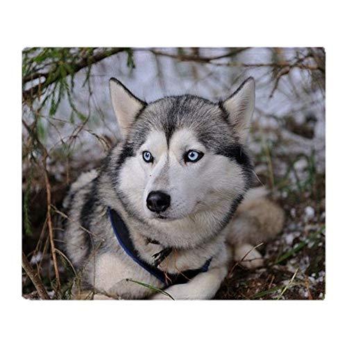 YISUMEI - Manta de forro polar suave - Husky siberiano, manta de...