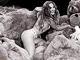 2-HOC1B1 Jennifer Lopez 47cm x 35cm,19inch x 14inch Silk