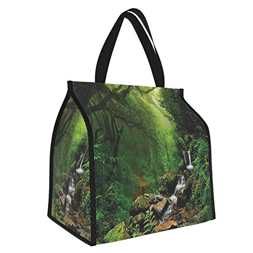 Rainforest Decorations Forest In Nepal Footpath Wildlife Spring Plant And Stones Moisture Water Print Green Brown Picnic Freezer Bag,Large Insulated Cooler Bag Picnic Camping Beach Tour Bbq 30l