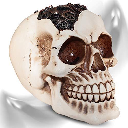 mtb more energy Cráneo ''Steampunk Axel'' Figura Decoración Horror fantasía...