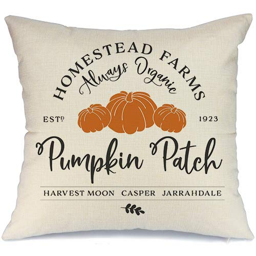 AENEY Fall Pillow Cover 18x18 inch Pumpkin Patch Throw Pillow for Fall Decor Farmhouse Fall Decorations Decorative Pillow Cover