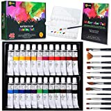 RiseBrite Watercolor Paint Set - 42 Pcs Watercolor Set with Watercolor Paints Tubes, Brushes, Watercolor Paint Paper, Premium Painting Supplies | Perfect Watercolor Set For Adults, Kids, and Beginners
