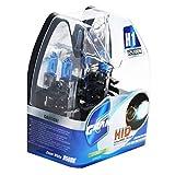 Headlight Bulb, H1 12V, 100 W, Super White Halogen Lamp, 5000K (H1)