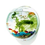 Pinsjar 12.8 Inch Acrylic Fish Bowl Wall Hanging Aquarium Tank Aquatic Pet Supplies Pet Products Wall Mount Fish Tank (Mirror Back)
