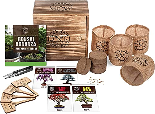 Bonsai Tree Seed Starter Kit - Mini Bonsai Plant Growing Kit, 4 Types of Seeds, Potting Soil, Pots, Pruning Shears Scissor Tool, Plant Markers, Wood Gift Box, Indoor Garden Gardening Gifts Ideas