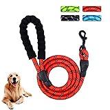 patio plus guinzaglio per cani a lunga durata, corda di alta qualità per alpinismo, robusto, robusto e robusto guinzaglio per cani più robusto, grande cane medio, 5 piedi