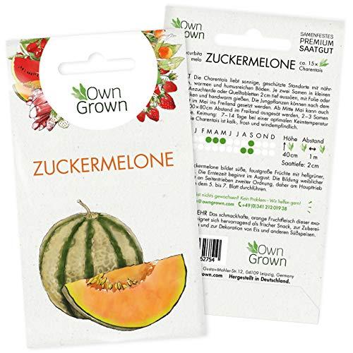 Zuckermelone Samen: Premium Melonen...