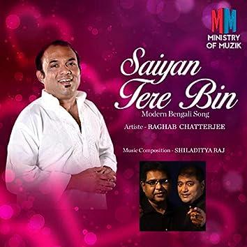 Saiyan Tere Bin