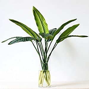 Wenyun 3Pcs Artificial Silk Bird of Paradise Leaf Potted Plant for Flower Arrangement Art Wedding Party Office Home Decor