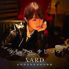 SARD UNDERGROUND「少しづつ 少しづつ」のCDジャケット