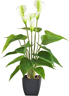 Best orchid & calla lily silk centerpiece Reviews