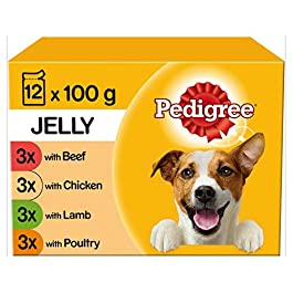 Pedigree Wet Dog Food Dogs and Puppies