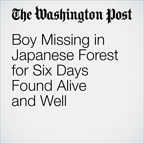 Boy Missing in Japanese Forest for Six Days Found Alive and Well audiobook cover art