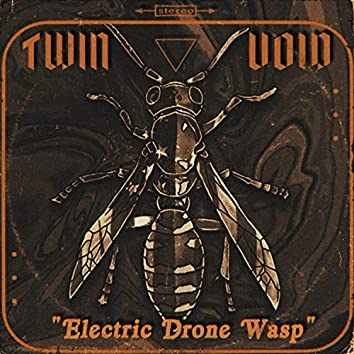 Electric Drone Wasp