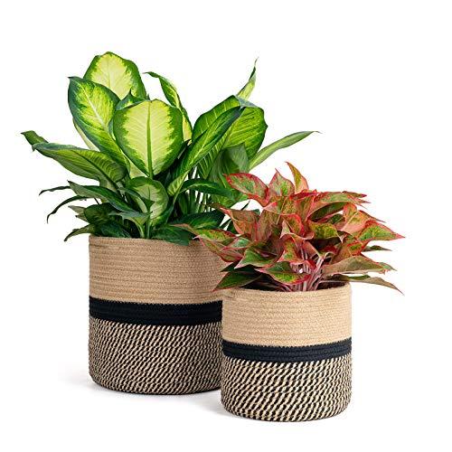 Goodpick 2 cestas de cuerda tejida para plantas, macetas de interior, decoración de yute, cesta de almacenamiento de plantas moderna, 28 cm y 20 cm