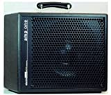AER AMP ONE 200 WATTS Bass guitar amplifiers Bass combos
