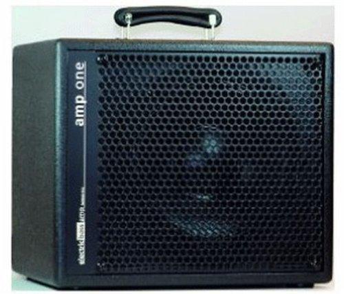 AER AMP ONE 200 WATTS Bass guitar amplifiers Bass combos