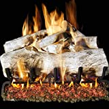 Peterson Real Fyre 24-inch Mountain Birch Log Set With Vented G45 Natural Gas Burner